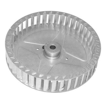 Picture of  Blower Wheel for Jade Range Part# 300188000