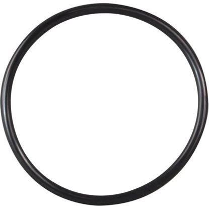 Picture of  O-ring for Electro Freeze Part# 159309
