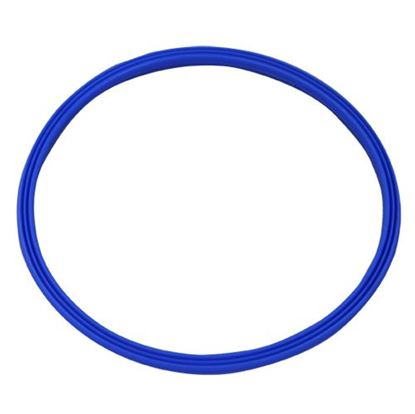 Picture of  Gasket - Inspection Lid for Rational Part# 5012.0566