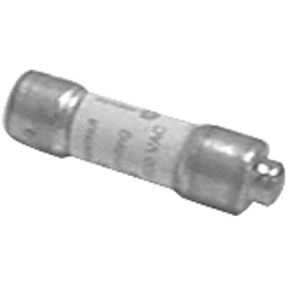 Picture of  Fuse for Toastmaster Part# 1455A8794