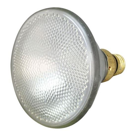 Picture of  Coated Bulb - 90w/130v for Alto Shaam Part# LP-33592