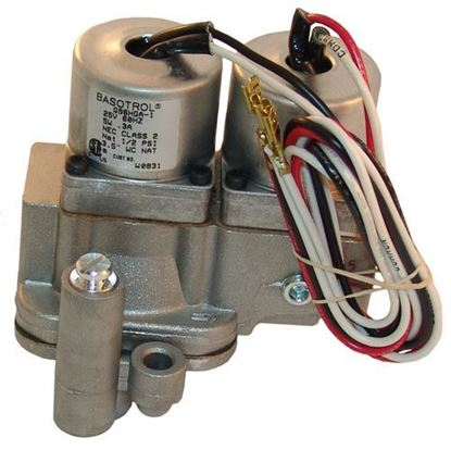 Picture of  Dual Solenoid Valve for Johnson Controls Part# G96HGA-1