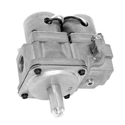 Picture of  Dual Gas Solenoid Valve for Garland Part# 1754902