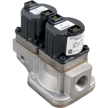 Picture of  Dual Solenoid Valve for Baso Part# G96AAQ-4