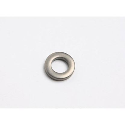 Picture of Washer Fl .50.25.095 Ss For Silver King Part# 99821P