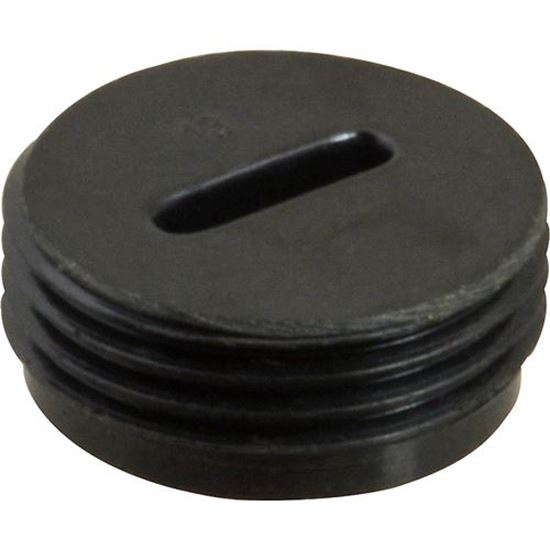 Picture of Cap,Motor Brush for Sterling Multi Mixer Part# SMM22-0024