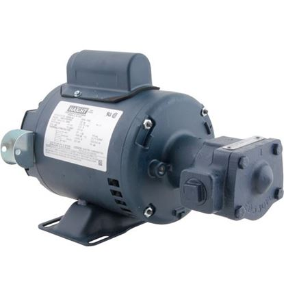 Picture of Motor (W/Pump Assy) for Darling Part# DAR700511
